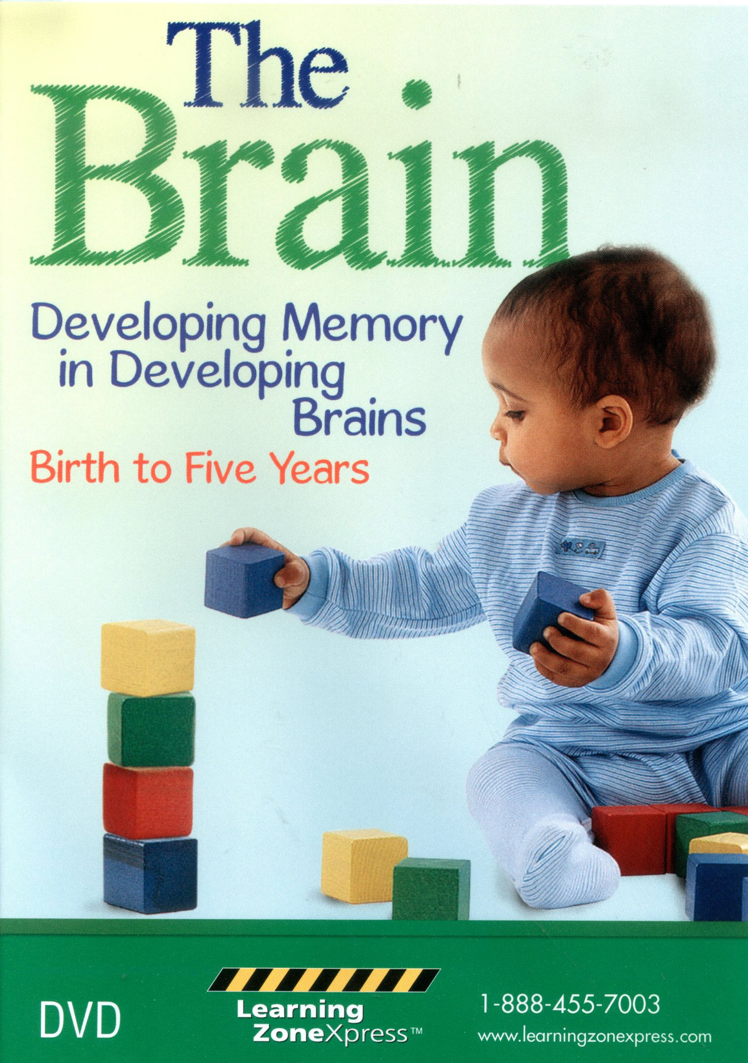 The brain developing memory in developing brains, birth to five years /