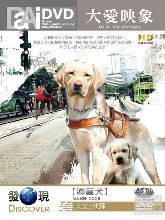 導盲犬(家用版) Guide dogs /