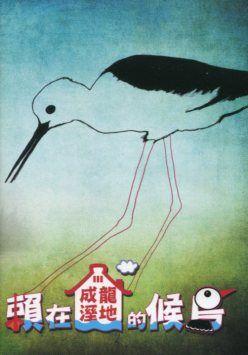 賴在成龍溼地的候鳥 Migratory birds staying in the Cheng Long Wetlands /